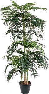 Silkkikasvi betelpalmu 240 cm