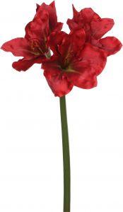 Silkkikasvi Amaryllis 74 cm punainen