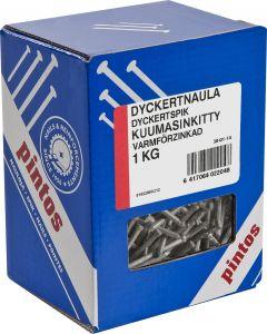 Dyckertnaula Pintos Ura 50 x 2,2 mm Kuumasinkitty