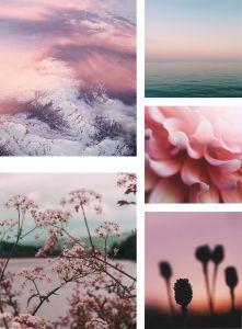 Sisustustaulu Pink Silence 5-os