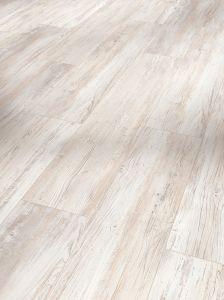 Vinyyli Parador Basic SPC 5.3 Pine Scandinavian White