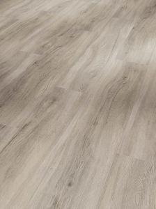 Vinyyli Parador Basic SPC 5.3 Oak Pastel - Grey