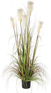 Silkkikasvi töyhtöheinä 120 cm