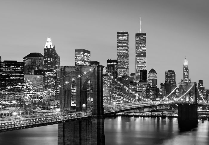 Fototapetti Non-Woven 8-os. Manhattan Skyline