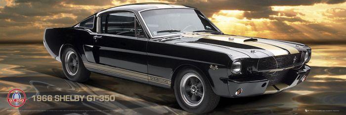 Sisustustaulu Reinders Ford Shelby Mustang 66 GT350