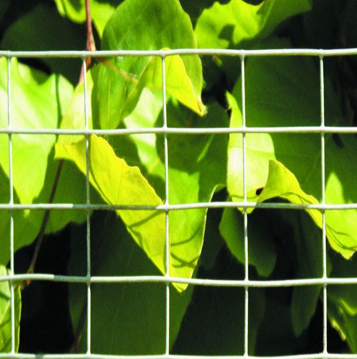 Eläinsuojaverkko 0,5 x 5 m / 13 x 13 mm galvanoitu